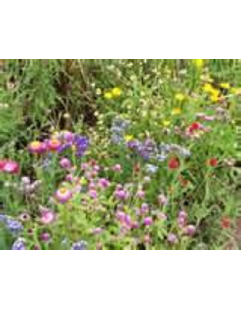 Maulbeerpapier mit Blumensamen, 50 Blatt