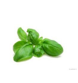 A4d99 Maulbeerpapier mit Basilikum-Samen 100 Blatt