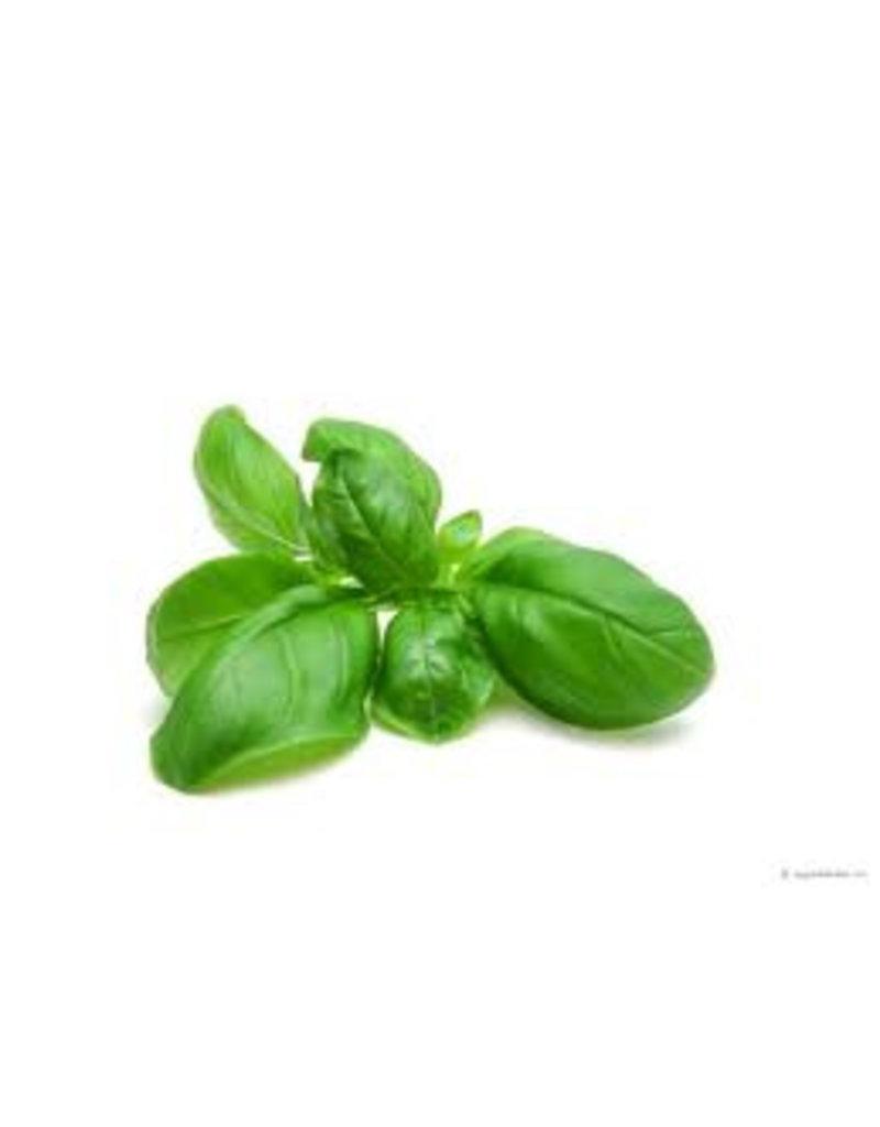Maulbeerpapier mit Basilikum-Samen 100 Blatt