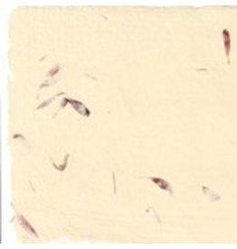 A5007 Set 20 kaarten  en enveloppen katoenpapier bloem