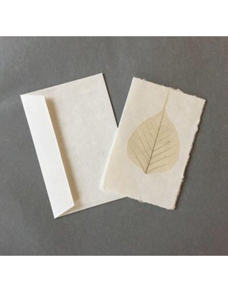10 Karten Bodhi Blatt