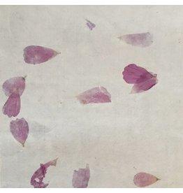 BT033 Papier bhoutanais avec bougainville