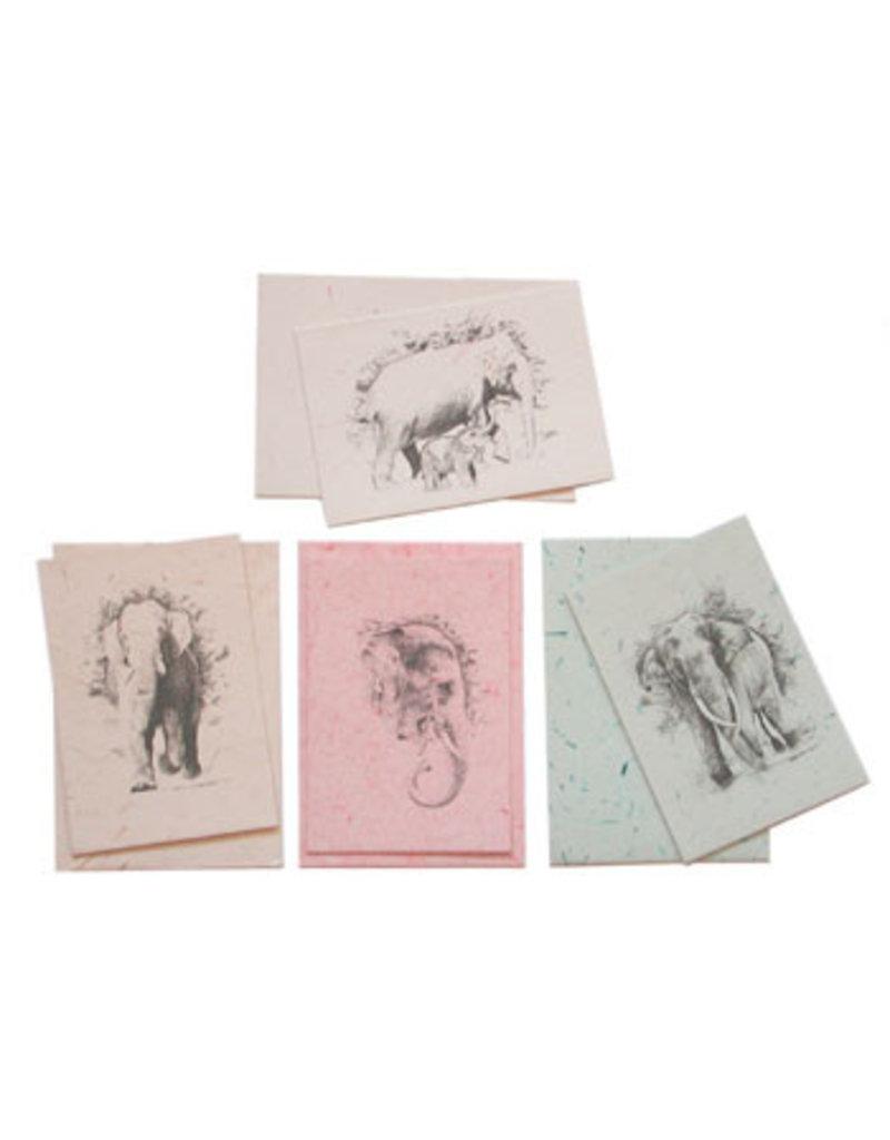 Set 6 kaarten olifantenpoeppapier