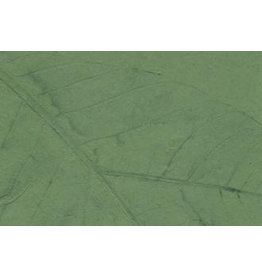 PN216 Gampi papier met bladnerfprint