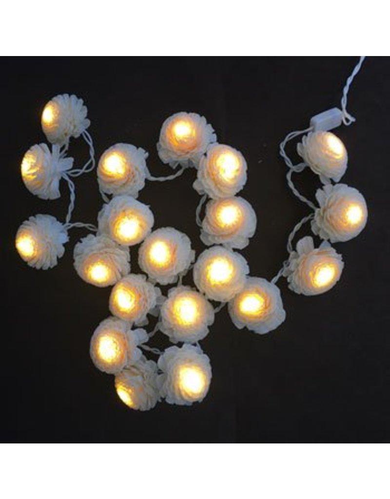 Lichtslinger jasmijnbloemen.