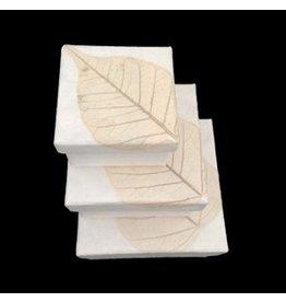 TH352 Lot de trois boîtes Papier murier