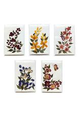 TH778 Set 10 kaarten /env. bloem