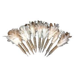 AE111 Set 10 pennen met veer en glitters