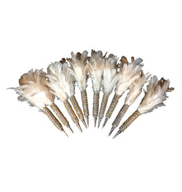 AE111 Set of 10 pens with feather and glitters