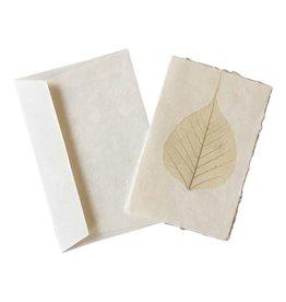 A6022 10 cartes feuilles bodhi