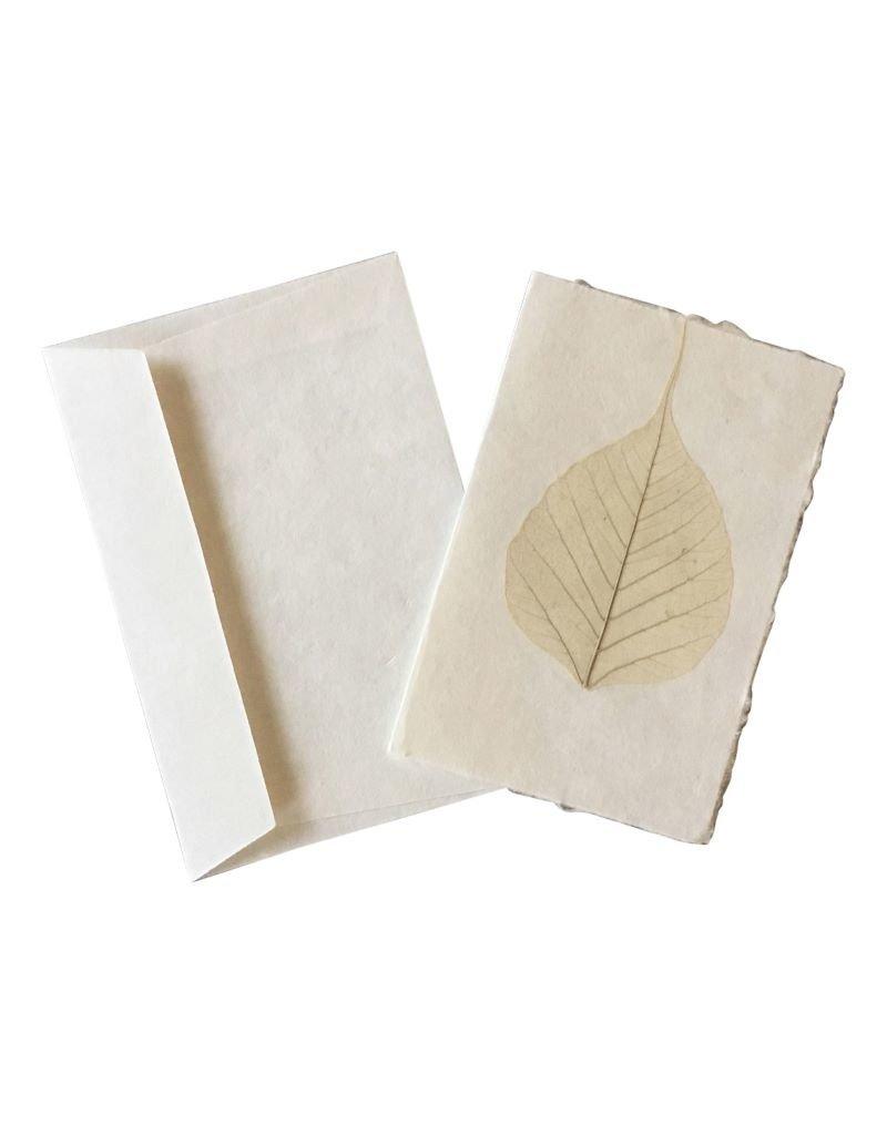 10 cartes feuilles bodhi