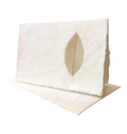 A6009 Lot de 10 cartes doubles avec feuille de grain, avec enveloppes