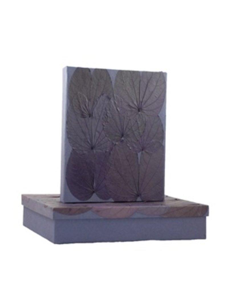 Set van een doos en een register met chongco bladeren