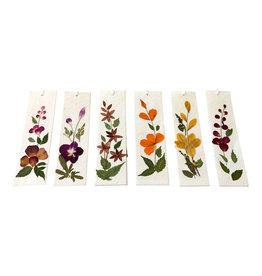 TH236  Ensemble de 12 marque-pages avec de vraies fleurs