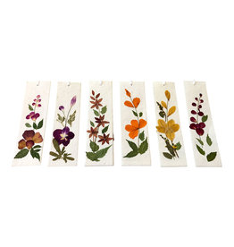 TH236 Set of 12 bookmarks with real flowers