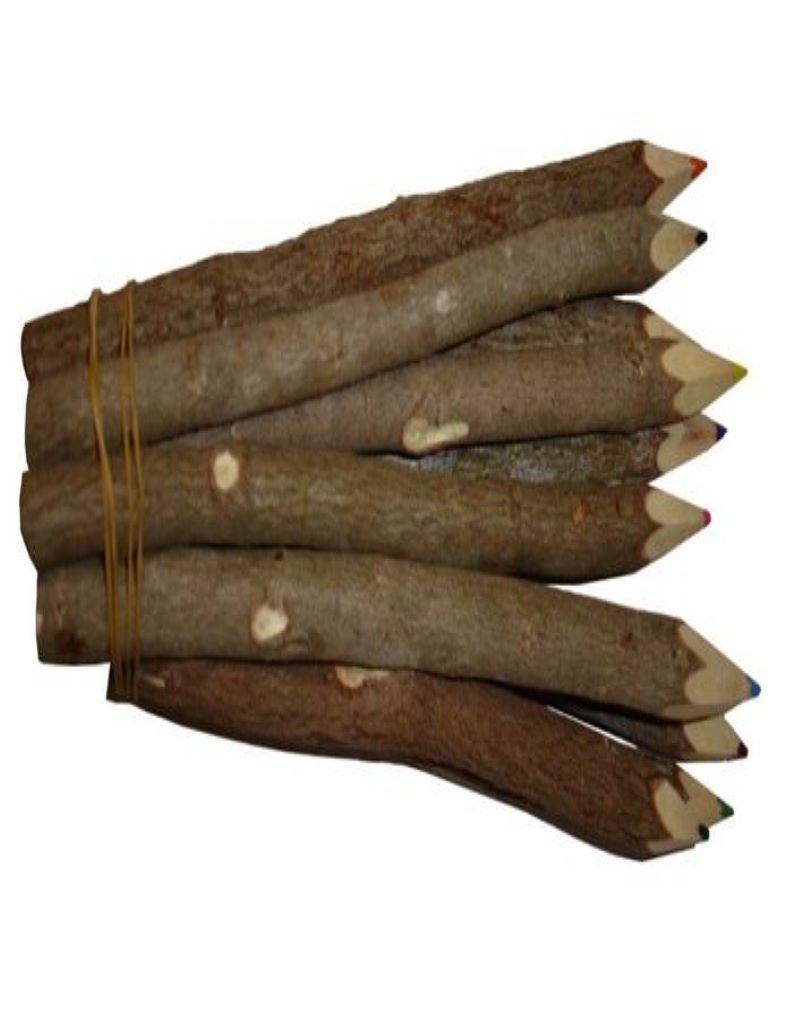 Lot de 10 crayons de couleur bois de tamarin