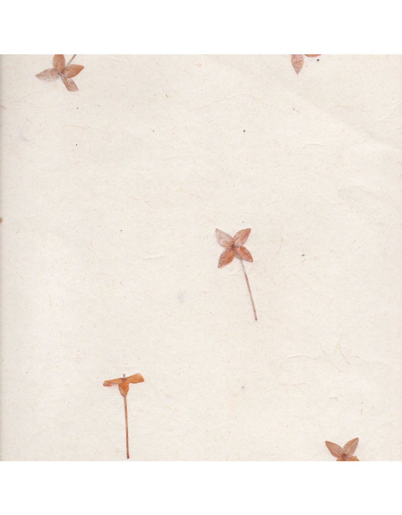 Gampi paper with santan flowers, 90 grs