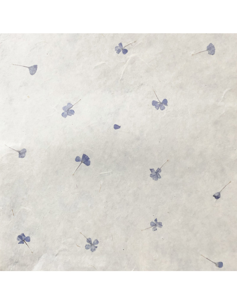 Papier gampi avec myosotis, 90 grs