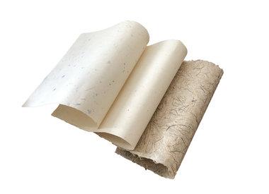 Gampi paper