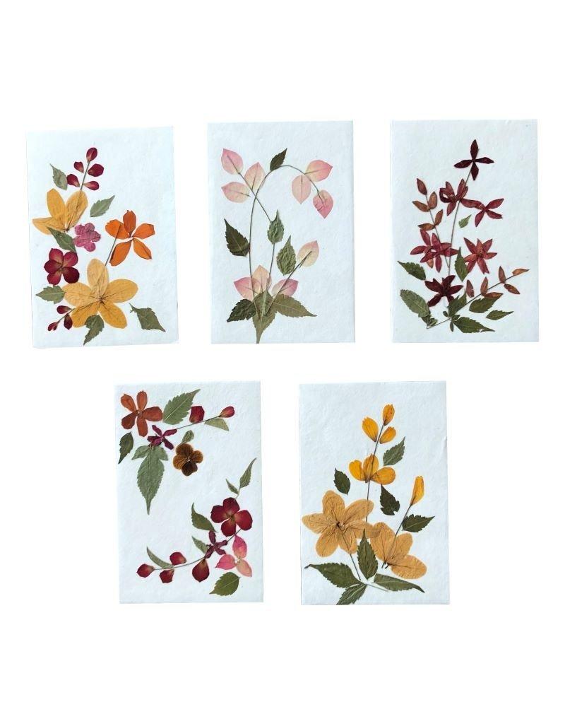 Set 10 kaarten /env. bloem