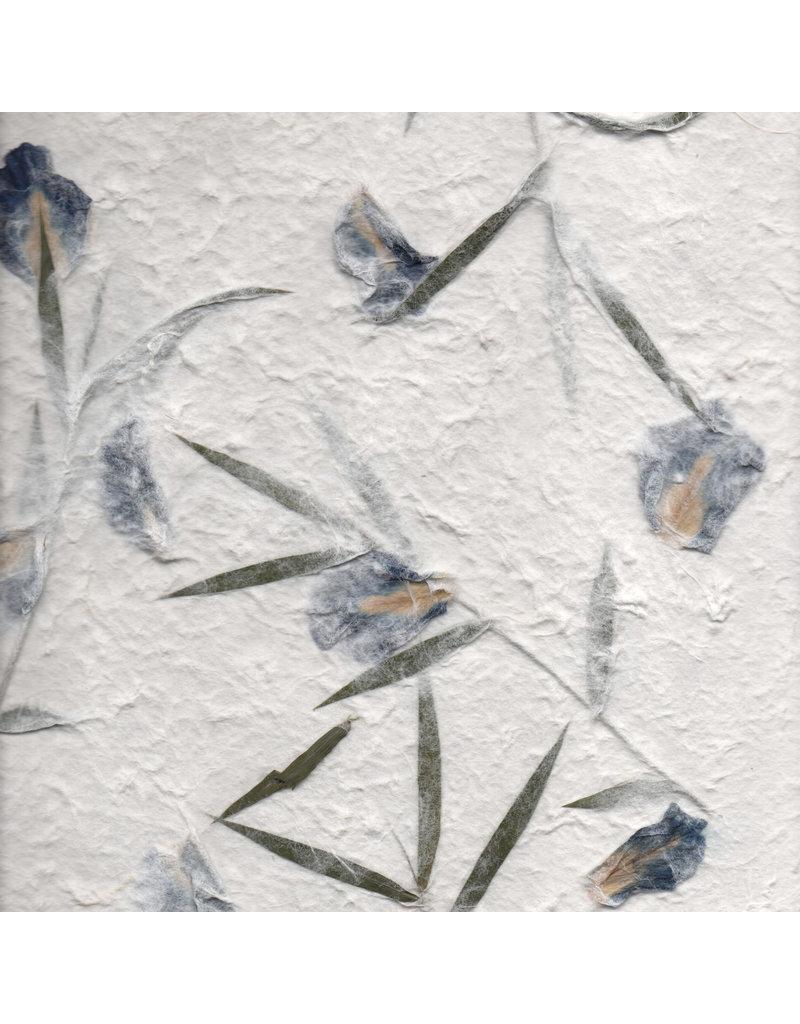 Mulberrypapier met  irisbloeen
