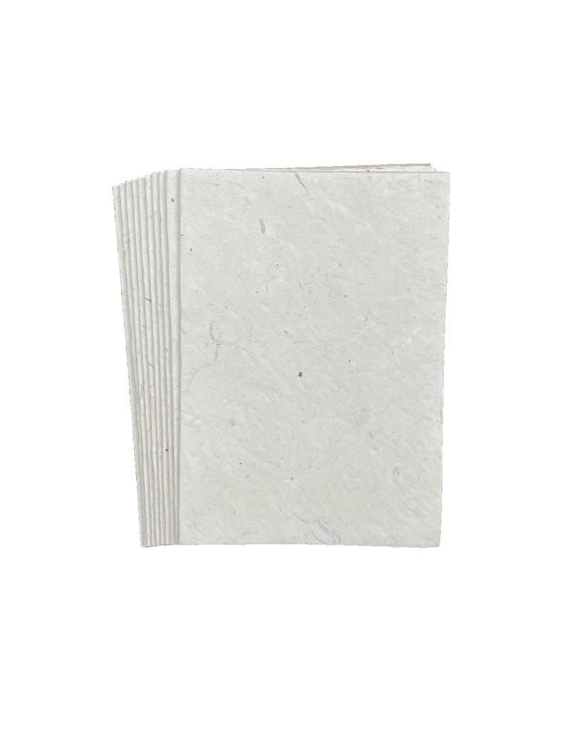lot de 10 cartes de papier lokta