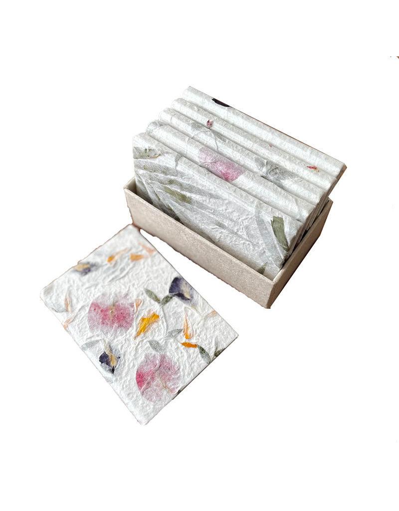 6 cahiers dans une boite