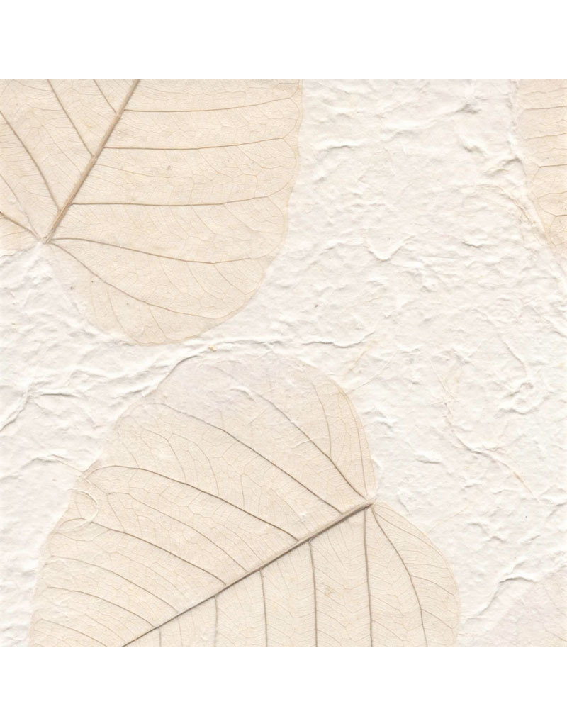 Mulberrypaper bodhileaves