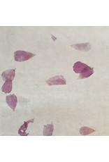 Set 25 Blatt Bhutan Papier