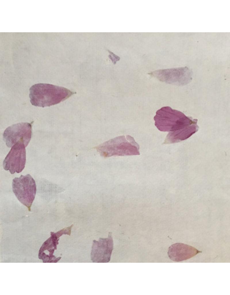 Ensemble de 25 feuilles de papier de bhutan
