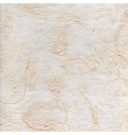 TH877 Papier de mûrier avec des fibres de canne à sucre