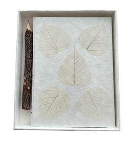 TH253 Notebook mulberrypapier, doos en potlood