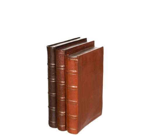 J -Line Decoration Books Brown Three Old Look - Large