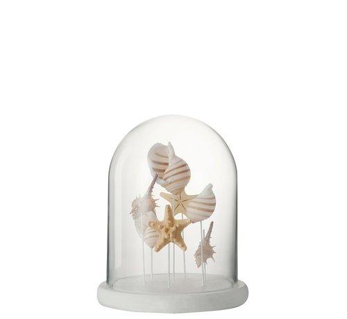 J -Line Decoration Glass Mix Shells Beige White - Medium