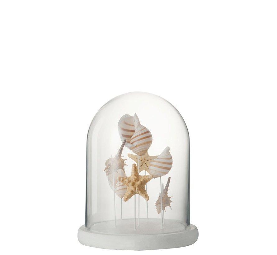 Decoration Glass Mix Shells Beige White - Medium