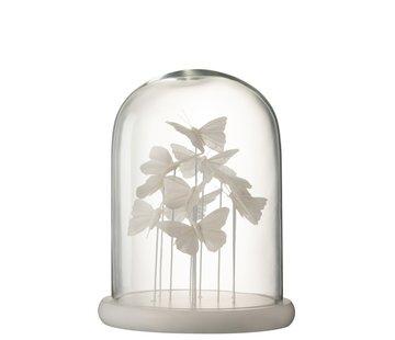 J -Line Decoration Stolp Glass Butterflies Transparent White - Large