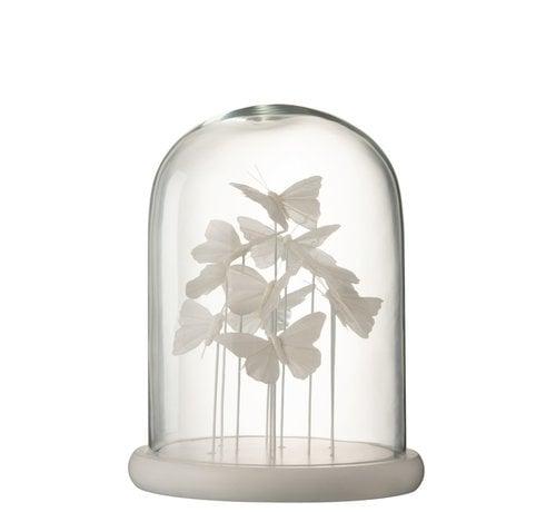 J-Line Decoration Stolp Glass Butterflies Transparent White - Large