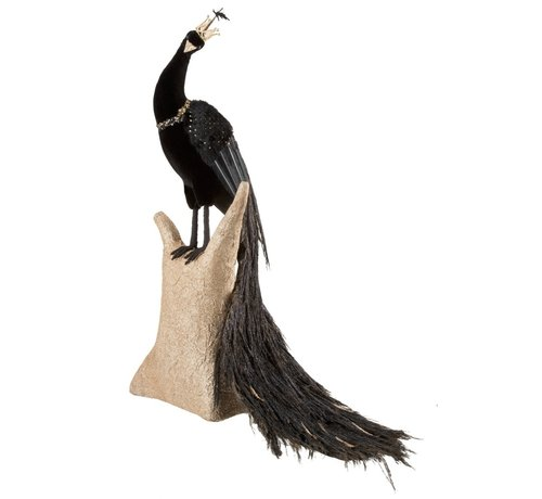 J -Line Decoration Figure Peacock Feather Feathers Black - Gold