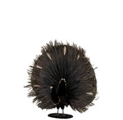 J-Line Decoration Peacock Open Feather Feathers Black - Gold
