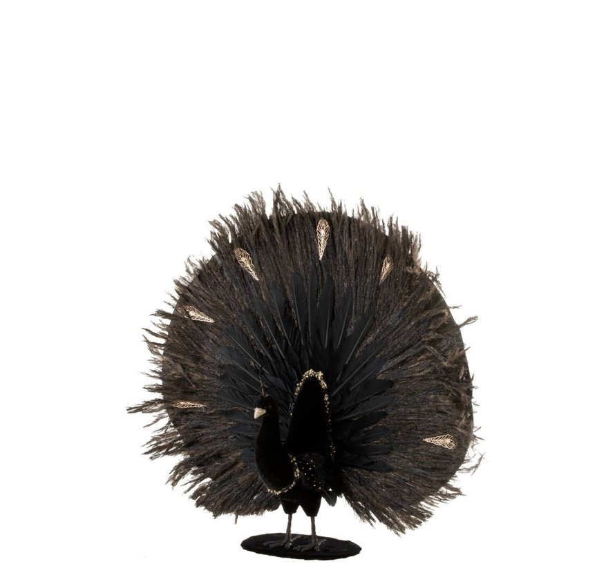 Decoration Peacock Open Feather Feathers Black - Gold
