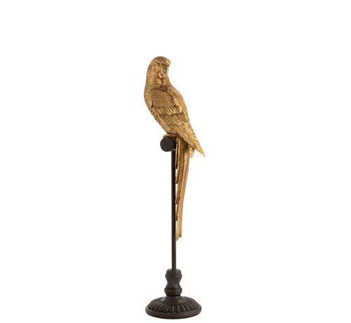 J -Line Decoration Parrot Poly On Stick Brown Gold - Medium
