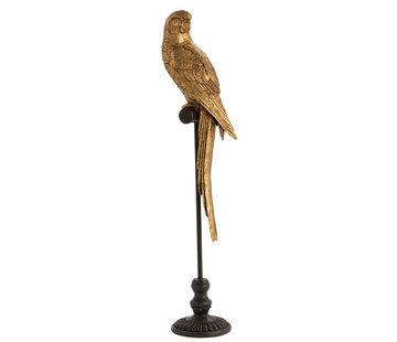 J -Line Decoration Parrot Poly On Stick Brown Gold - Large