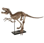 J-Line  Decoration Dinosaur Raptor On Foot Poly - Light Brown