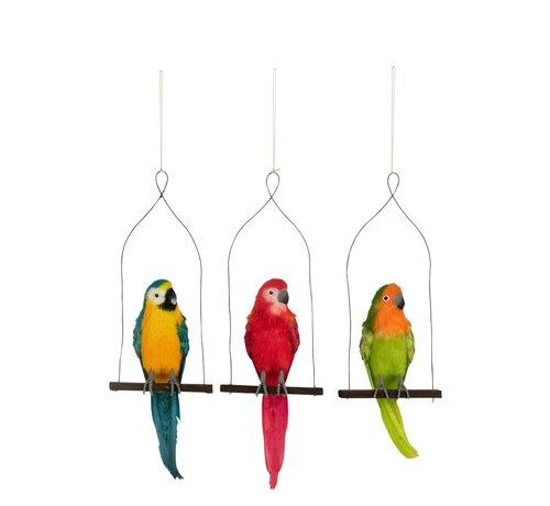 J-Line Decoration Parrots On Stick Green Red - Blue