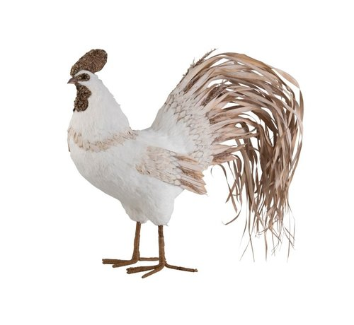 J -Line Decoration Chicken Cotton Leaves White Natural Brown - Large