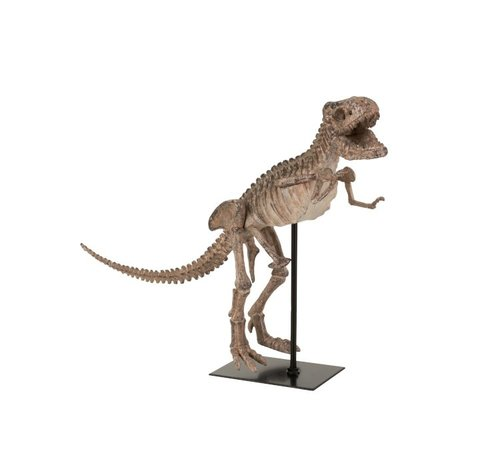 J -Line Decoration Dinosaur T- Rex On Foot Poly - Light Brown