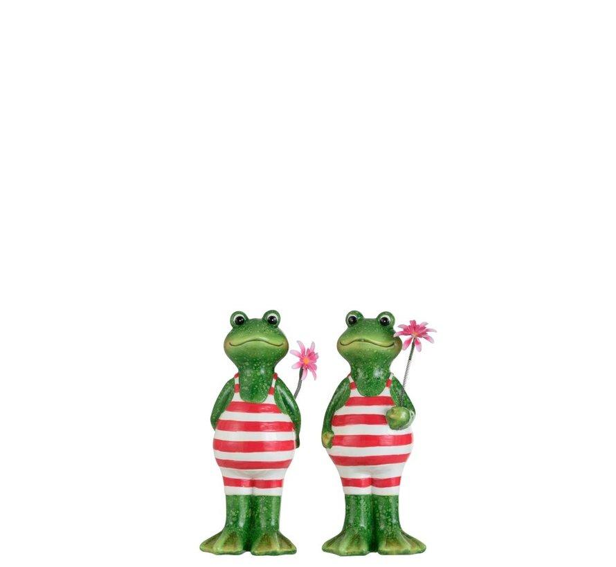Decoratie Twee Kikkers Badpak Bloem Groen Roze - Medium
