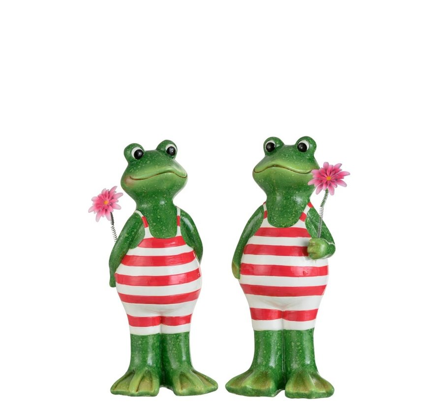 Decoration Two Frogs Swimsuit Flower Green Pink - Large