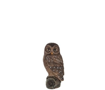 J-Line Decoration Figure Owl On Branch Polyester Brown - Small