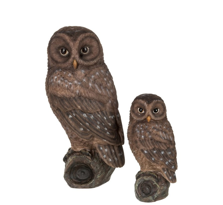 Decoration Figure Owl On Branch Polyester Brown - Small